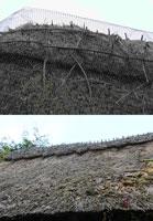 Крученая сетка защищает крышу из соломы
